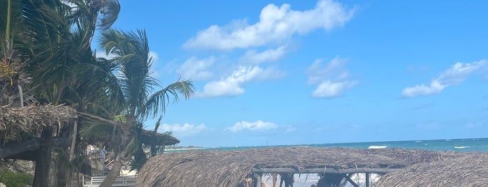 Papaya Playa Beach Club is one of Mexico.