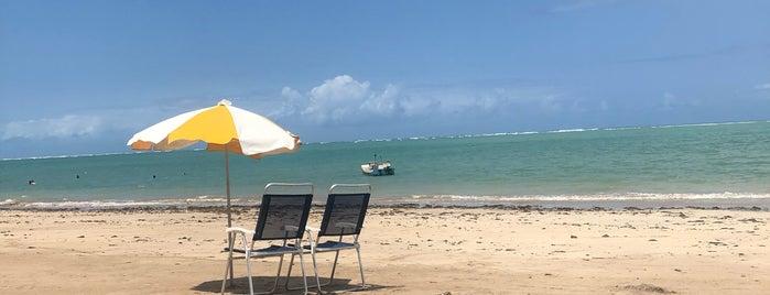 Praia do Patacho - Rota Ecológica dos Milagres is one of Locais curtidos por Paola.