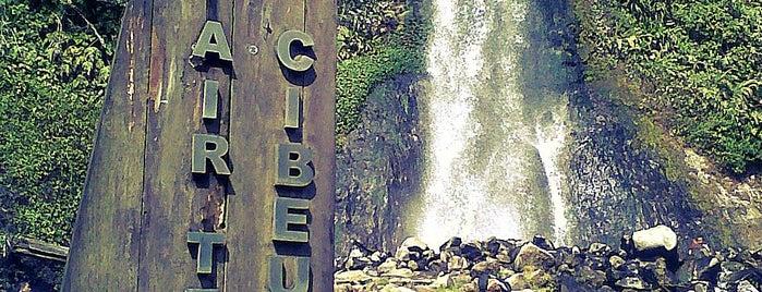 Taman Nasional Gunung Gede Pangrango is one of  DeVieさんの保存済みスポット.