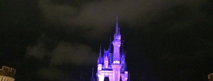 Tokyo Disneyland is one of Japan. Places.