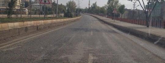 Çınar is one of visited tr.