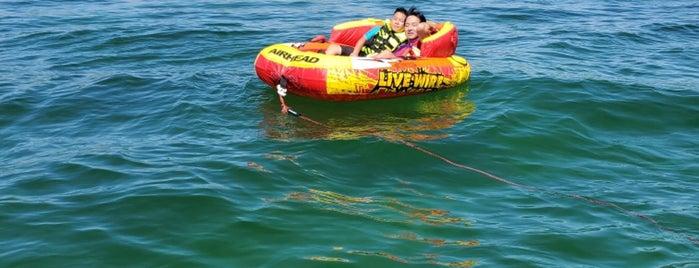 Lake Havasu is one of Tempat yang Disukai Rosemary.