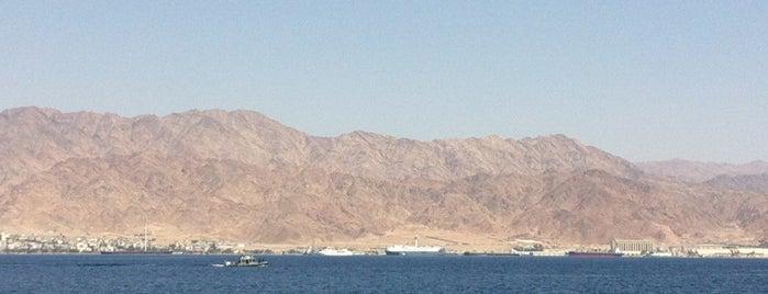 The Red Sea is one of Lugares favoritos de Alex.