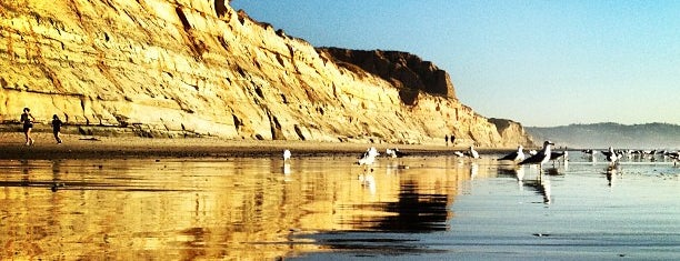 Torrey Pines State Beach is one of SD.