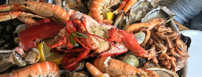 Lobster is one of Ostend.