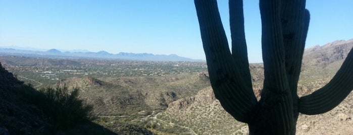 Sabino Canyon Phoneline Trail is one of Orte, die Yvette gefallen.