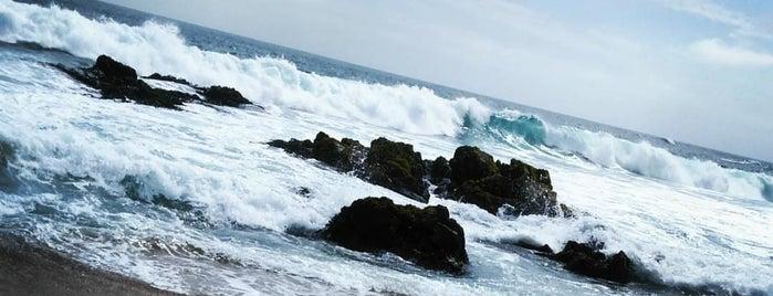Playa Piedras Negras is one of สถานที่ที่ Mario ถูกใจ.