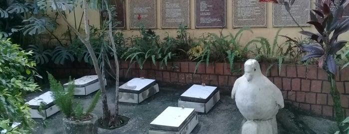 Cemitério dos Pássaros is one of Viagem.