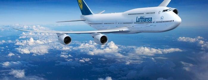 Lufthansa Flight LH 797 is one of Quza-Fly Prishtina.