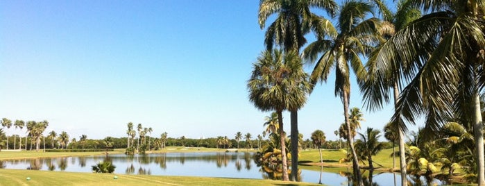 Crandon Golf at Key Biscayne is one of ACTIVITIES.