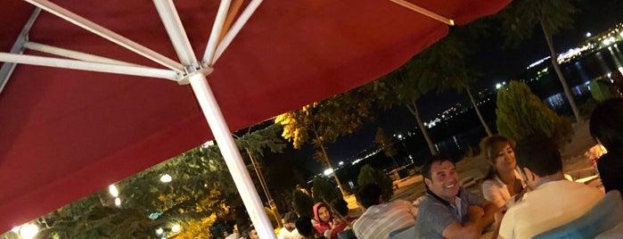 Samanlık Göl Cafe is one of Fatih 님이 좋아한 장소.