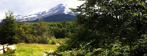 Parque Nacional Tierra del Fuego is one of South America.