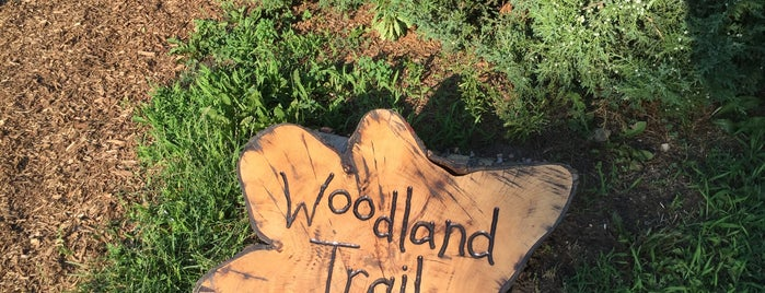 Woodland Trail is one of Tempat yang Disukai Andrew.