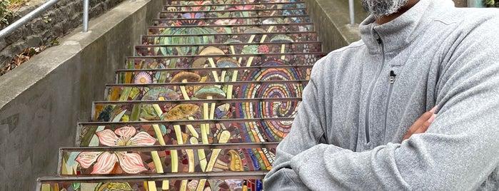 Hidden Garden Mosaic Steps is one of Mosaic steps.