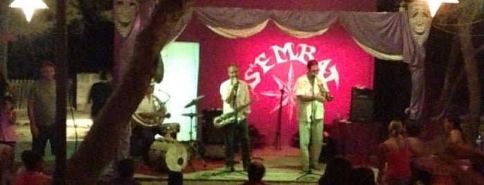 S'embat is one of ¡Palma está en mi alma!.