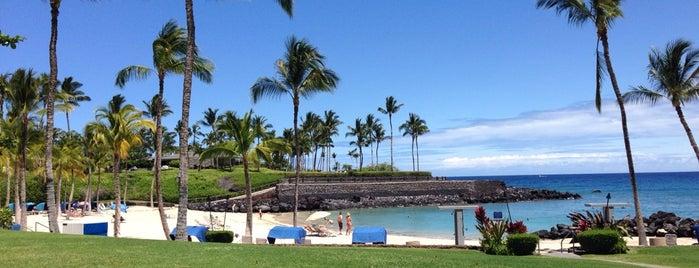 Mauna Lani Beach Club is one of Tempat yang Disukai DJ.