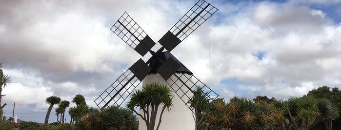 Museo del Queso Majorero is one of Qué visitar en Fuerteventura.