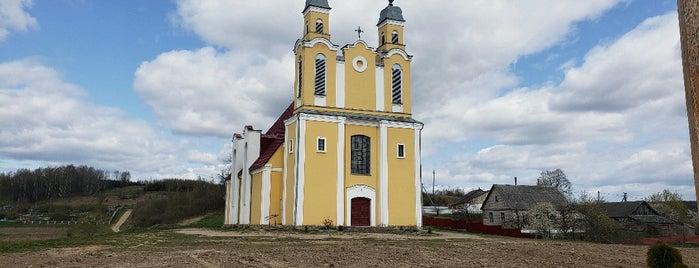 Костел Преображения Господнего is one of Stanisławさんのお気に入りスポット.