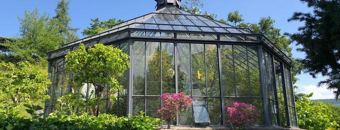 Alter Botanischer Garten is one of สถานที่ที่ Nieko ถูกใจ.