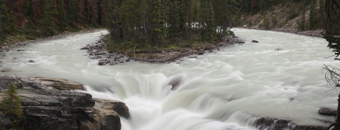 Sunwapta Falls is one of Tom's Liked Places.