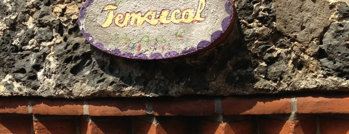 Temazcal Hotel Mi Pueblito is one of Estefani: сохраненные места.