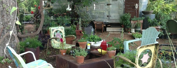 East Austin Succulents is one of Austin - CHECK!.