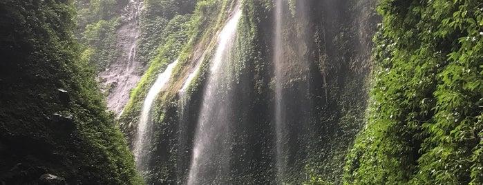 Madakaripura Waterfall is one of Java / Indonesien.