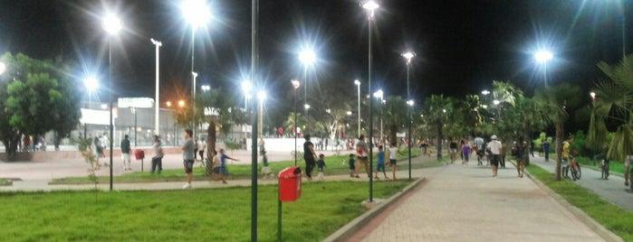 Nova Potycabana is one of สถานที่ที่ Edgar ถูกใจ.