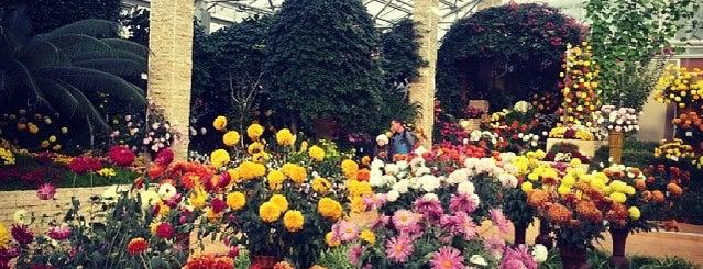 """Grădina Botanică """"Anastasie Fătu"""" is one of Iaşi."""