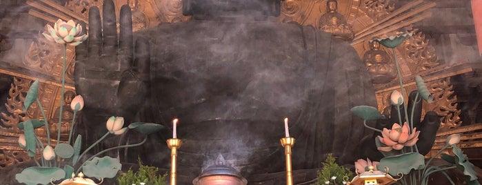 Vairocana Buddha (Nara no Daibutsu) is one of Chris : понравившиеся места.
