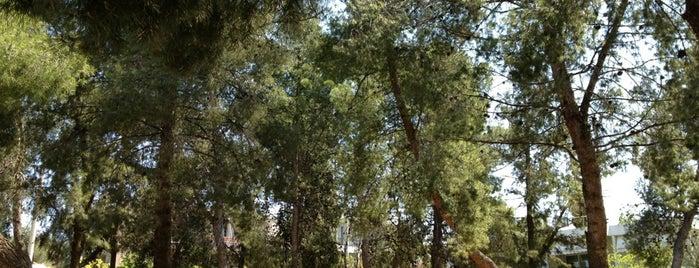 Άλσος Παπάγου is one of Ifigenia: сохраненные места.