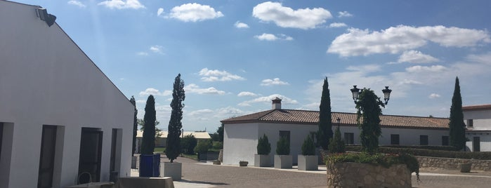 Hotel Hospes Palacio de Arenales & Spa***** is one of España.