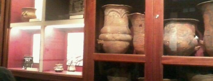 Museo de antropología is one of Viaje A Cordoba.