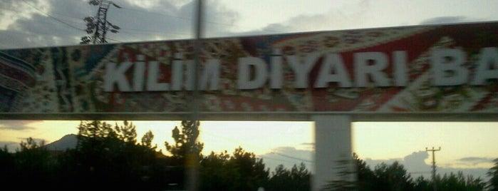 Bayat is one of Locais curtidos por 🌜🌟hakan🌟🌛.