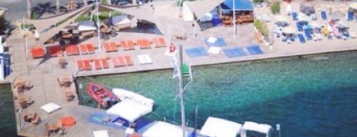 Selim'in Yeri is one of M 1.