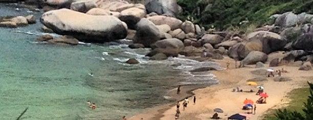 Praia da Tainha is one of Locais salvos de Alex.