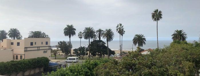 Elephante is one of LA.
