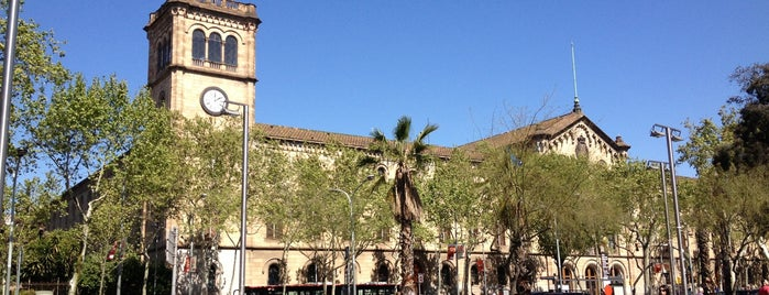 Plaça de la Universitat is one of Barcelona-To-Do List.