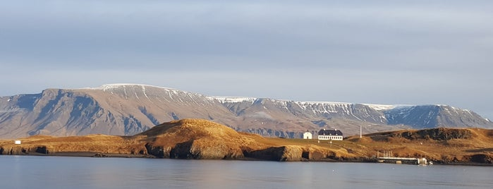 Viðey is one of Island.