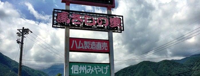 ビアンデ  さくら亭 is one of 駒ヶ根ソースカツ丼会加盟店.