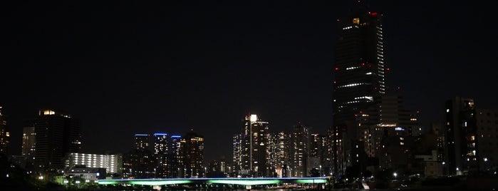 霊岸島水位観測所 is one of 記念碑.