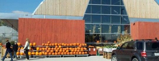 Fred's Farm Fresh International Market is one of Barbara'nın Beğendiği Mekanlar.