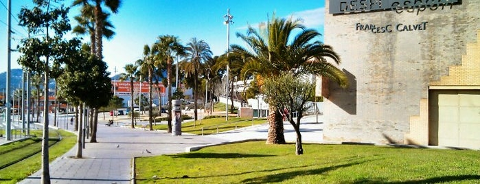 Poliesportiu Francesc Calvet is one of Lugares favoritos de Marco.