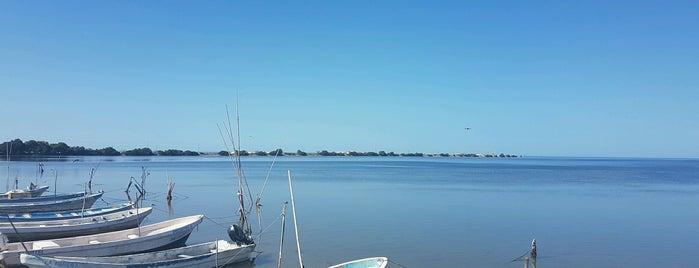 Reserva Biósfera de los Petenes is one of Campeche.