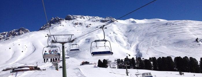 Alpe Di Pampeago is one of Luoghi della Val di Fiemme.