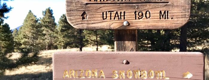 Aspen Loop Trail is one of Arizona.