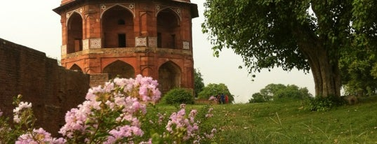 Purana Quila is one of India North.