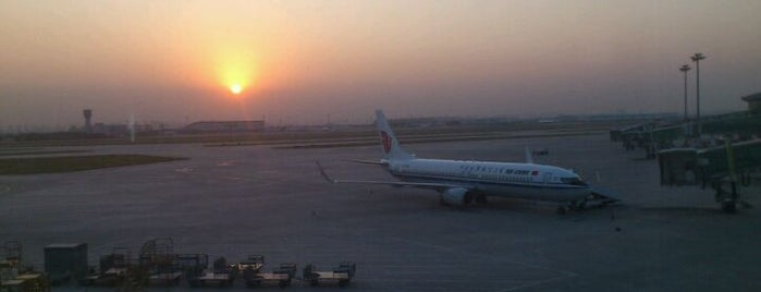 Tianjin Binhai International Airport (TSN) is one of สถานที่ที่ Shanshan ถูกใจ.