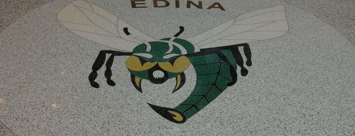 Edina High School is one of Twin Cities High Schools.