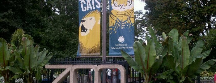 Smithsonian's National Zoo is one of Must-visit Arts & Entertainment in Washington.